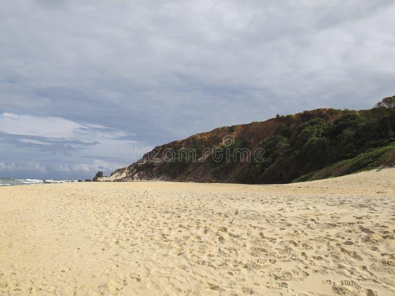 Van Pipastrand en Baia Dos Golfinhos - het Strand van Geboorte, Rio Grande doet Norte, noordoostelijke kust van Brazilië stock afbeeldingen