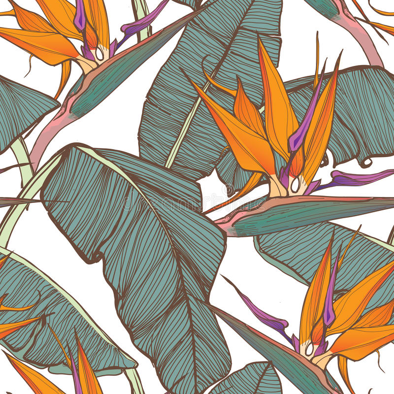 Van Surf Illustration, gráficos do t-shirt, vetores ilustração stock