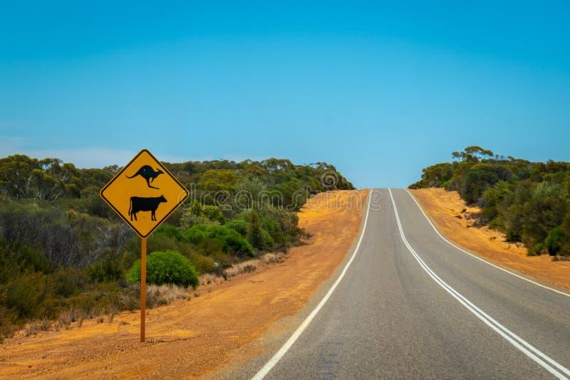 Van waarschuwingskangoeroes en koeien de straat ondertekent op Australische struikweg dichtbij Billa Bong Roadhouse royalty-vrije stock afbeelding