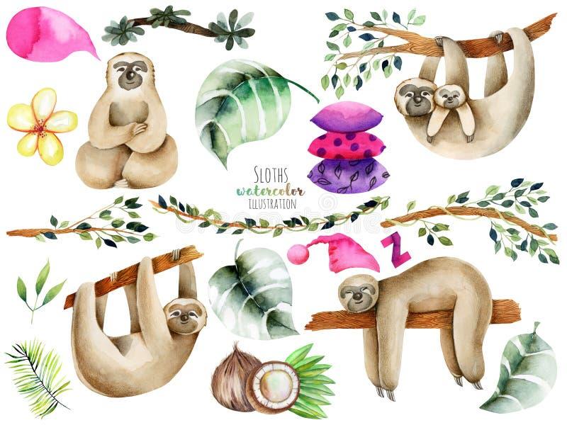 Van waterverf leuke luiaarden en elementen illustratie vector illustratie