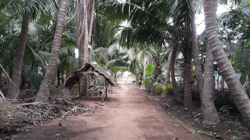 Vanathirajapuram gospodarstwa rolnego dom w India zdjęcie stock