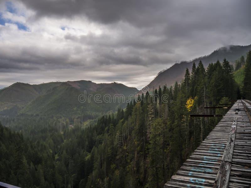Vance Creek Bridge arkivfoton