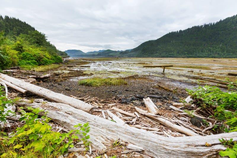 Vancouver photographie stock libre de droits