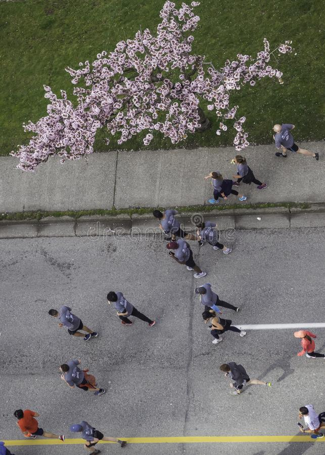 Vancouver AVANT JÉSUS CHRIST Canada, avril 2019 Course 2019 du soleil de Vancouver images libres de droits