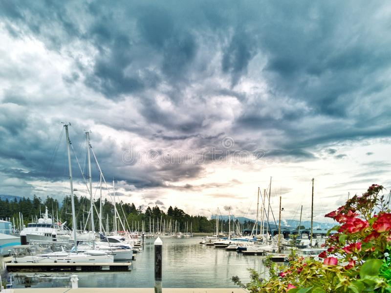 Vancouver bay royalty free stock photography
