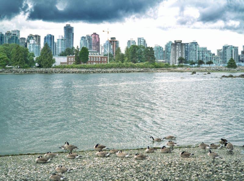 Vancouver bay stock photo