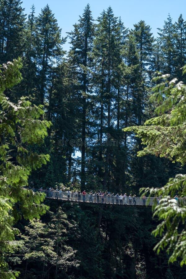 Vancouver, Canadá - 24 de junio de 2017: Gente que cruza el Ca famoso imagenes de archivo