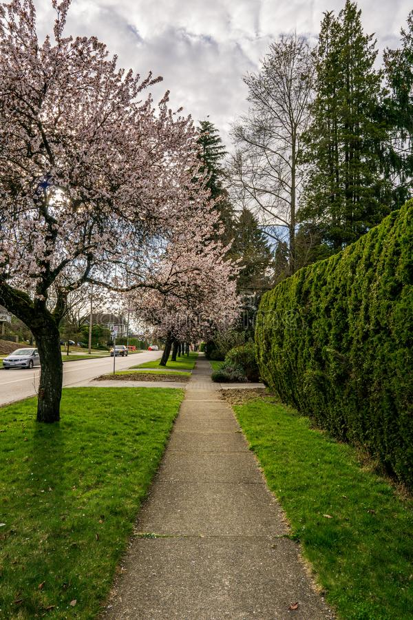 VANCOUVER, CANADA - MARCH 30, 2019: street view of big busy city west 33rd Avenue stock photos