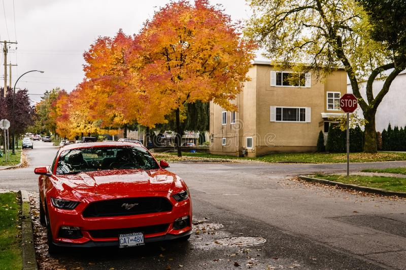 VANCOUVER, CANADA - October 1, 2018: street view residential area autumn time golden leaves. House town home road exterior facade fall housing landscape stock images
