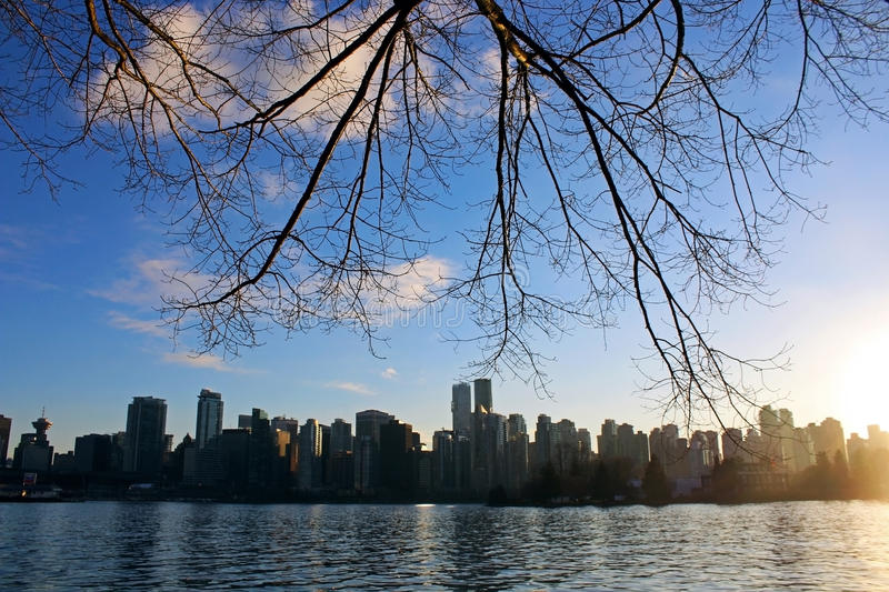 Vancouver city Skyline. The skyline of Vancouver, Canada at day time. Photo taken from Stanley Park royalty free stock photos