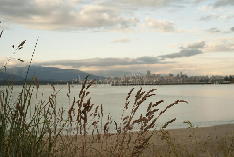 Vancouver Cityscape from Kitsilano beach stock photo