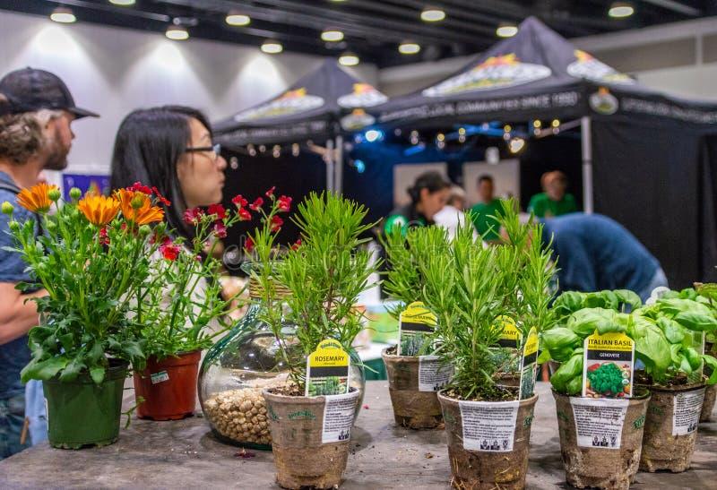 Vancouver, Columbia Británica, - 5 de mayo de 2019: Hierbas en potes abonablees en VegExpo, centro de conferencia de Vancouver foto de archivo