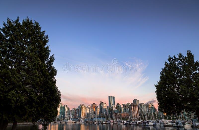 Vancouver du centre au coucher du soleil encadré par deux arbres photo stock