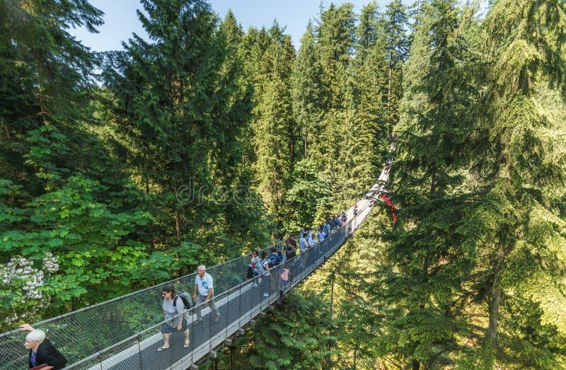 Vancouver, Kanada - 24. Juni 2017: Leute, die den berühmten Ca kreuzen stockbild