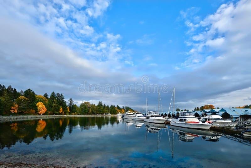 Vancouver nadmorski w Stanley parku obraz royalty free