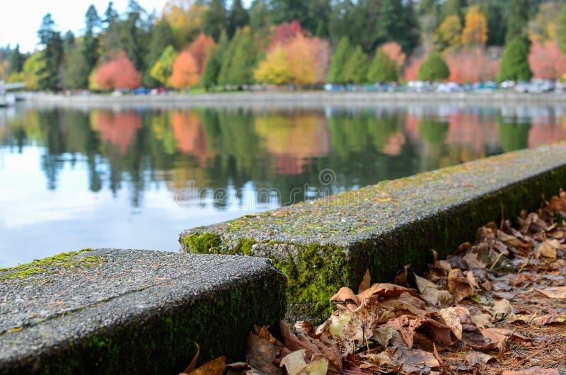 Vancouver skyddsmur mot havet i höst royaltyfri fotografi