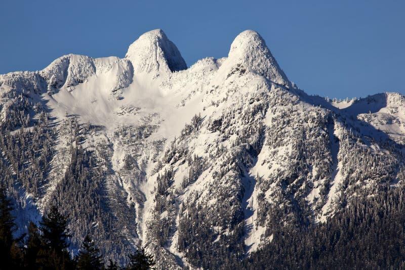 Vancouver Snowy due montagne dei leoni BC immagine stock libera da diritti