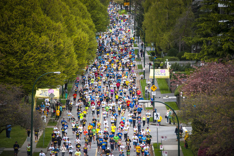 2013 Vancouver Sun Run. Vancouver, British Columbia (CANADA) - April 21: Athletes participate in the 2013 Vancouver Sun Run, April 21, 2013. Many runners chose royalty free stock photos