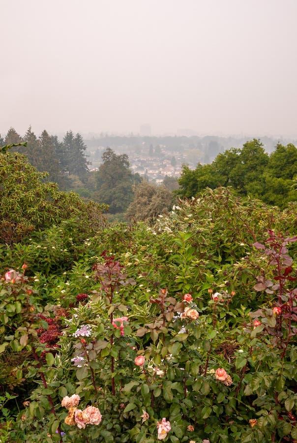 Vancouver tijdens BC Wildfires stock fotografie