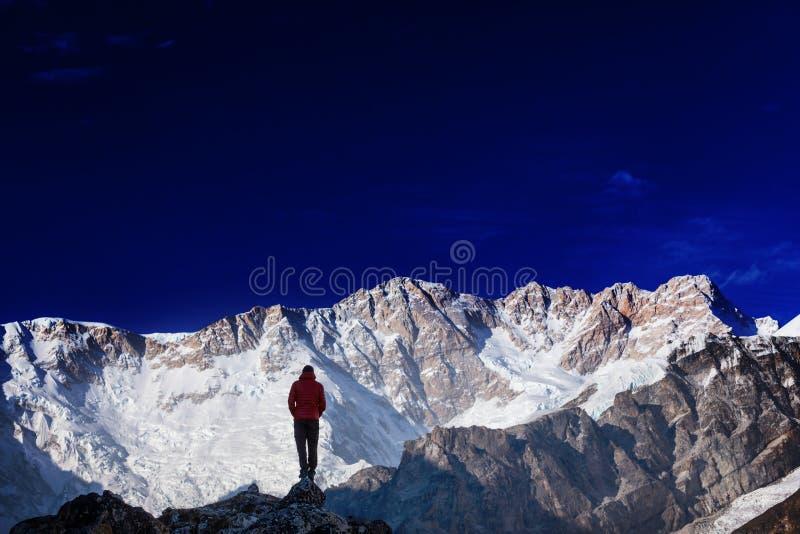 Vandring i Himalayas royaltyfri bild