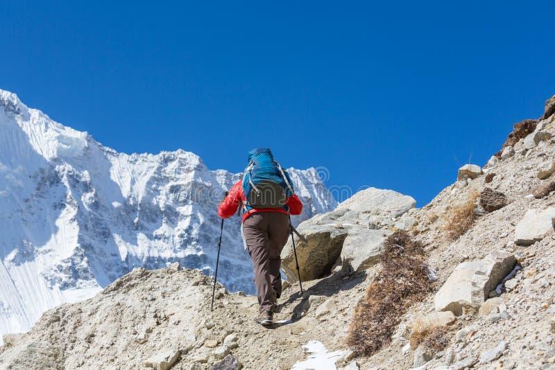 Vandring i Himalayas fotografering för bildbyråer