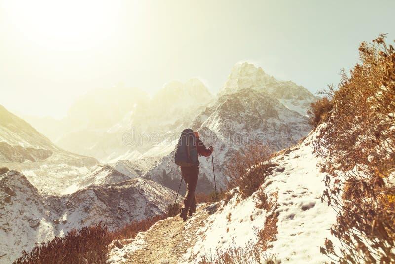 Vandring i Himalayas royaltyfria foton