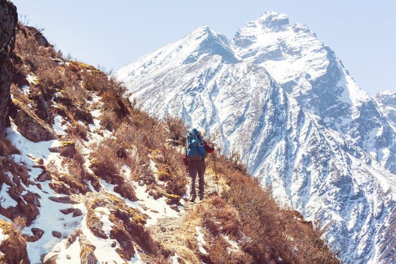 Vandring i Himalayas royaltyfri fotografi
