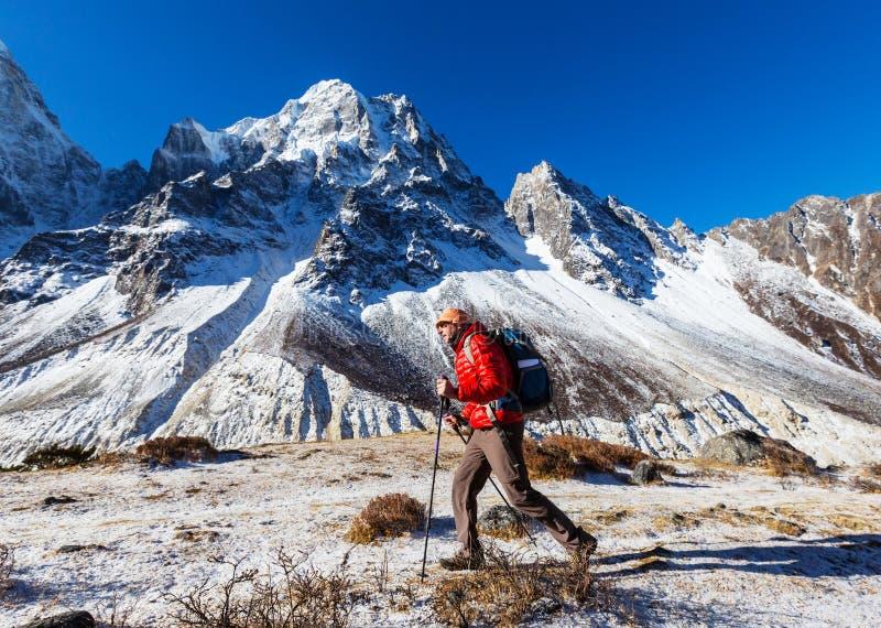Vandring i Himalayas royaltyfria bilder