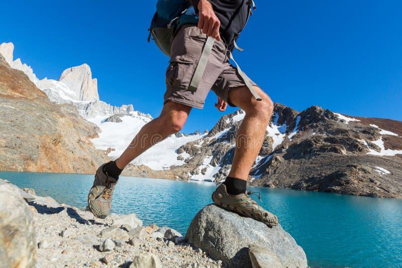 Vandring i Patagonia fotografering för bildbyråer