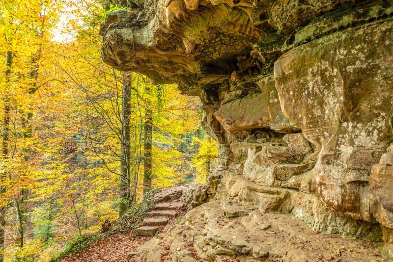 Vandring längs den Mullerthal slingan i Luxembourg royaltyfri bild