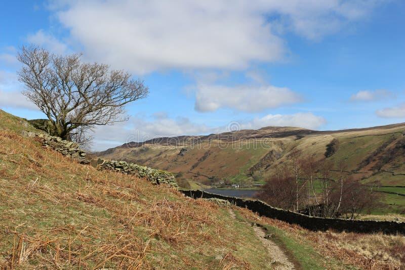 Vandringsled Watendlath Cumbria för trädhorisontbräken arkivbild