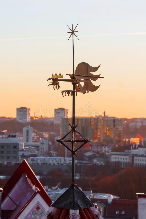 Vane on the roof of a house in Tallinn, Estonia.  royalty free stock photos