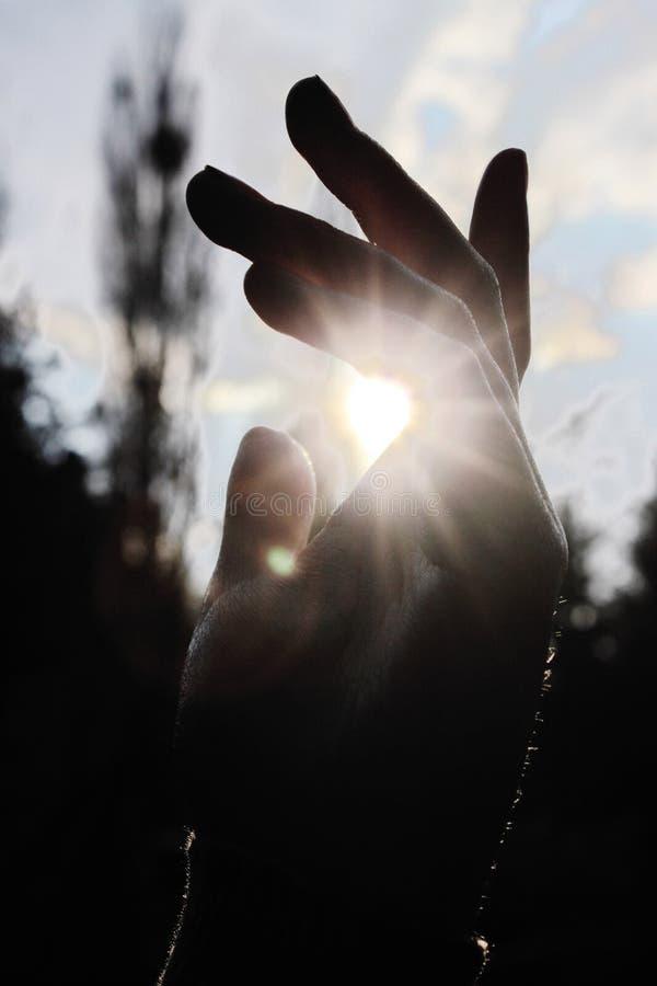 Vang de zon stock fotografie