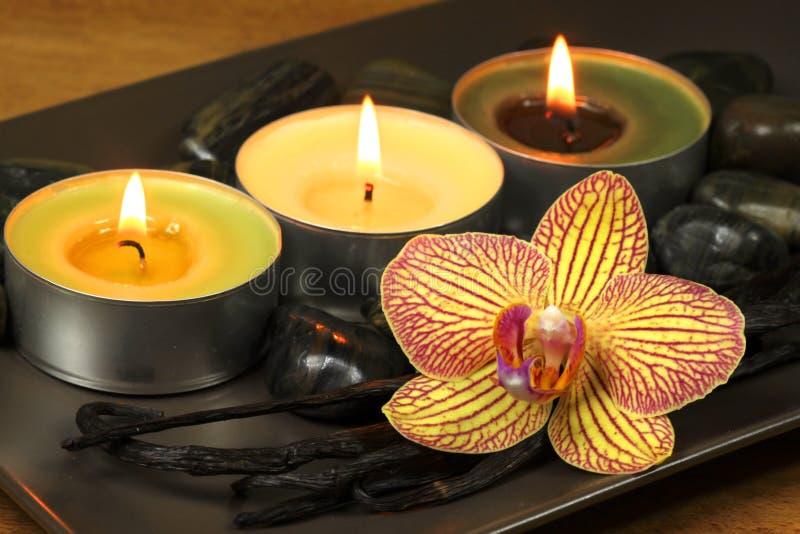Vaniglia e mela aromatherapy immagine stock