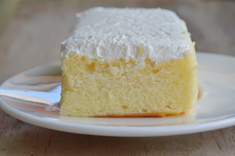 Vaniljanstrykning mjölkar den kräm- kakan på maträtt royaltyfri fotografi