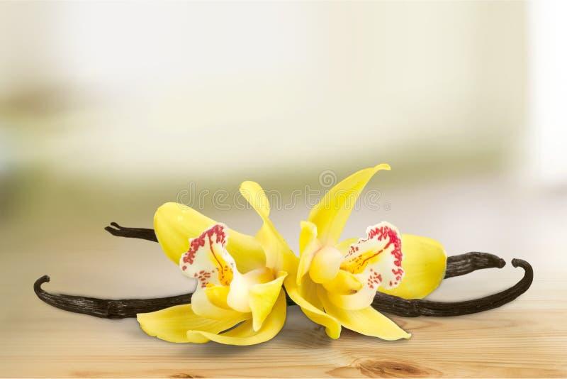 Vaniljfröskidor och blommor över träbakgrund royaltyfria bilder
