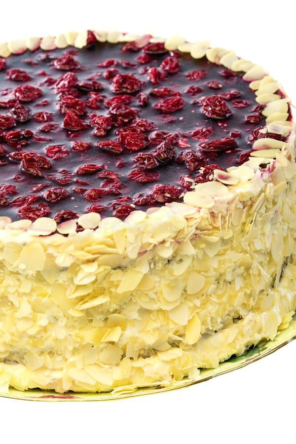 Vaniljkaka med körsbärsröd gelé royaltyfri bild