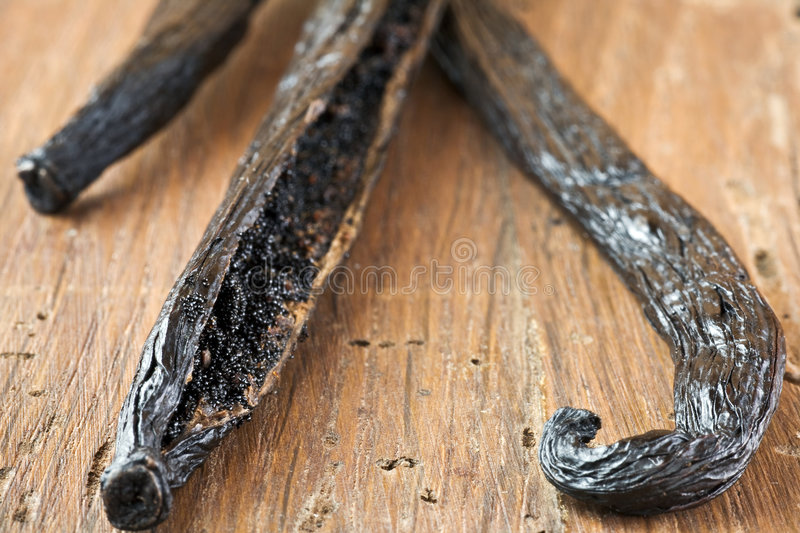 Download Vanilla stock image. Image of organic, food, seed, exotic - 2792973