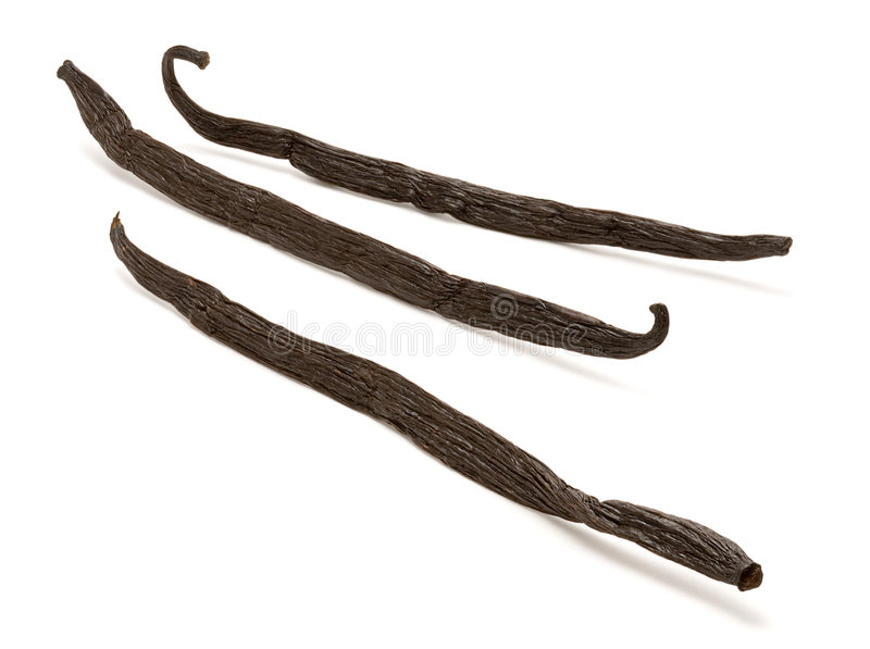 Vanilla Beans. Isolated on a white background. Isolation is on a transparent layer in the PNG format royalty free stock photo