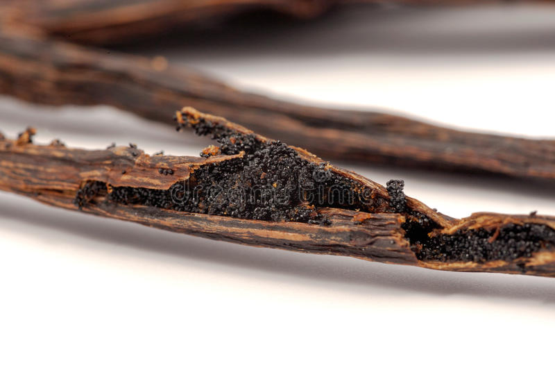 Vanilla beans on cracked stick stock photography