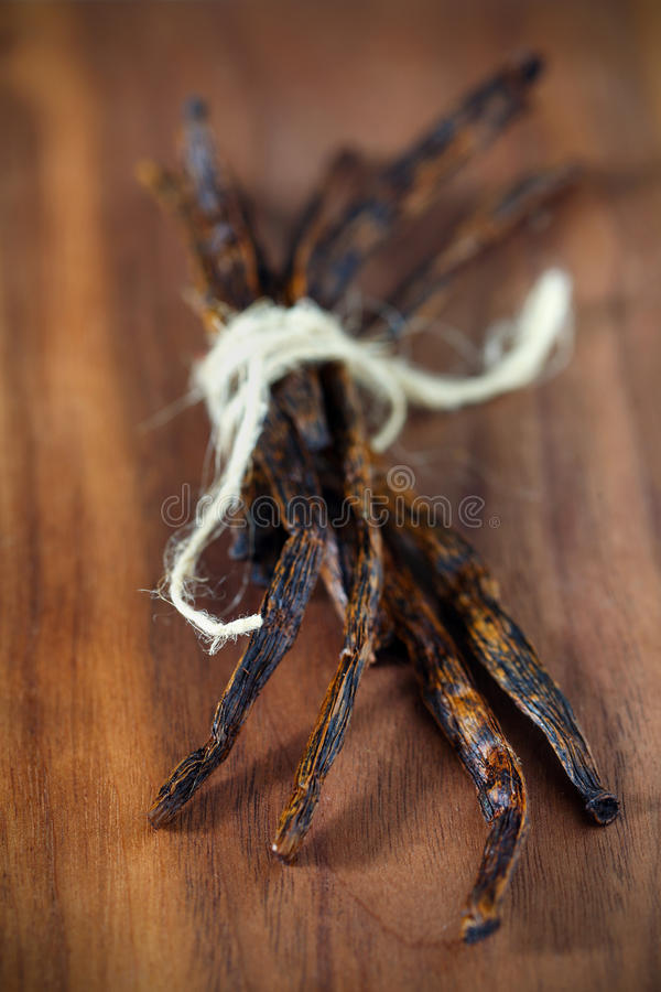 Vanilla bunch, dried pods fragrant spice from India stock photography
