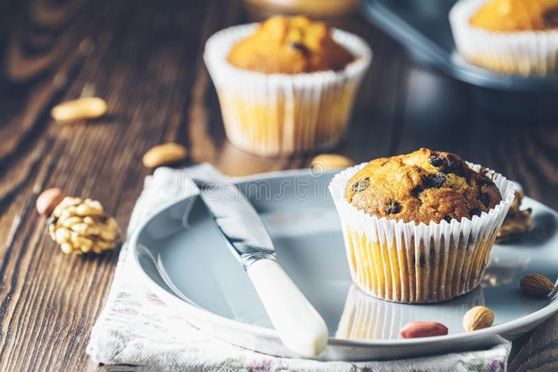 Vanilla caramel muffins in paper cups on plate on dark wooden background royalty free stock photography