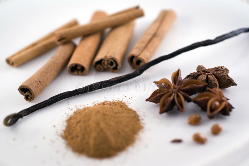 Download Vanilla and cinnamon stock photo. Image of powder, freshness - 4132348