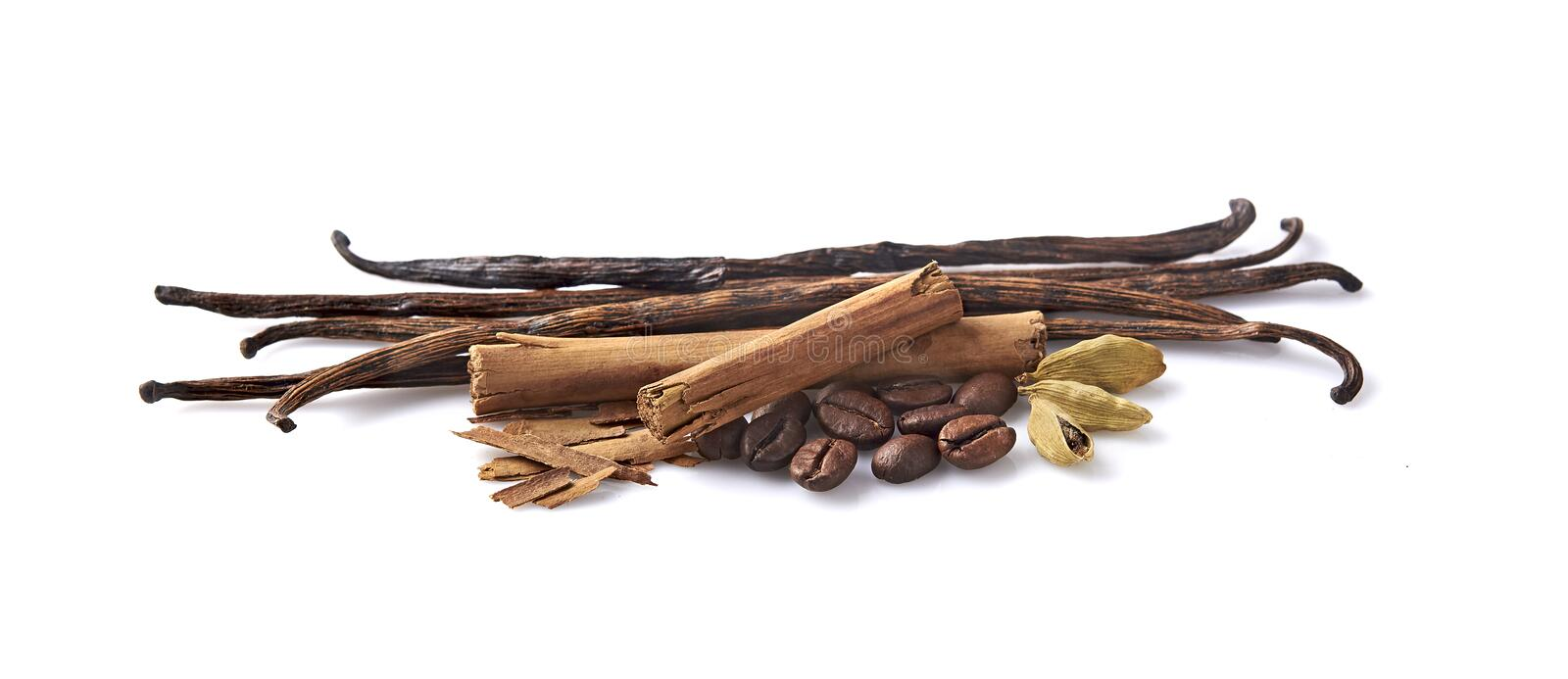 Vanilla, cinnamon, cardamom and coffee beans on white background. Spices  royalty free stock photo