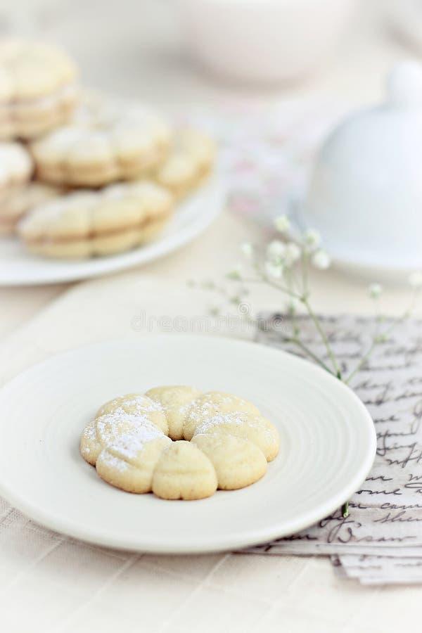 Download Vanilla cookies stock photo. Image of photography, vanilla - 29898742