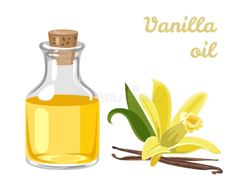 Vanilla essential oil in a glass bottle and yellow fragrant flower stock illustration