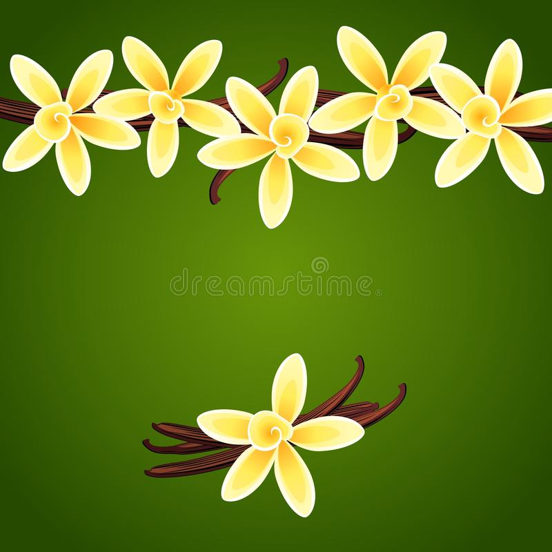 Download Vanilla flowers stock vector. Image of delicious, food - 31439601