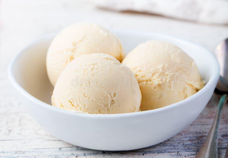Vanilla Ice kräm med mintkaramellen i hemlagad organisk produkt för bunke royaltyfri foto