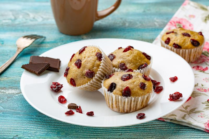Vanilla muffins with dried cherries on the white plate and blue wooden rustic table. royalty free stock photography