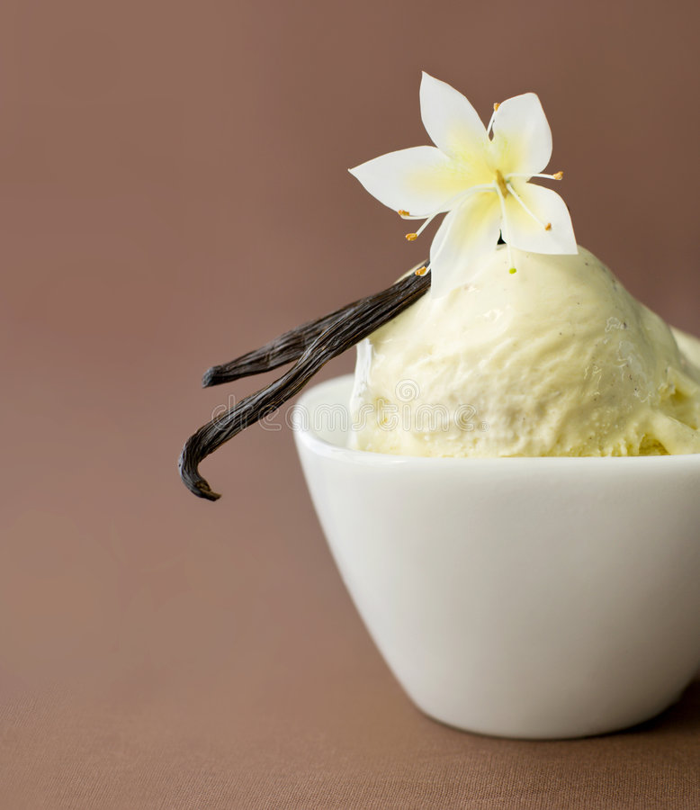 Free Vanilla On Ice-cream In A Bowl Royalty Free Stock Images - 8692409